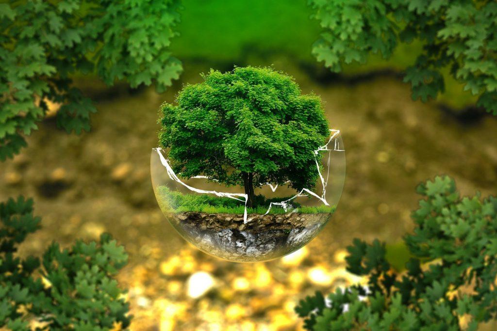 Numérique Responsable, Jour de la Terre